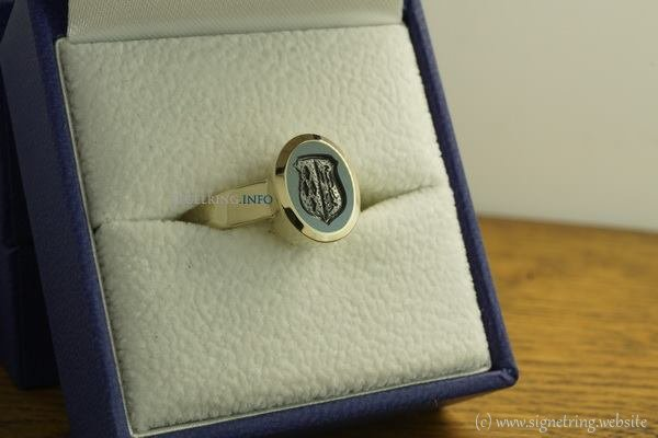 Combination stone white gold signetring signet rings ring